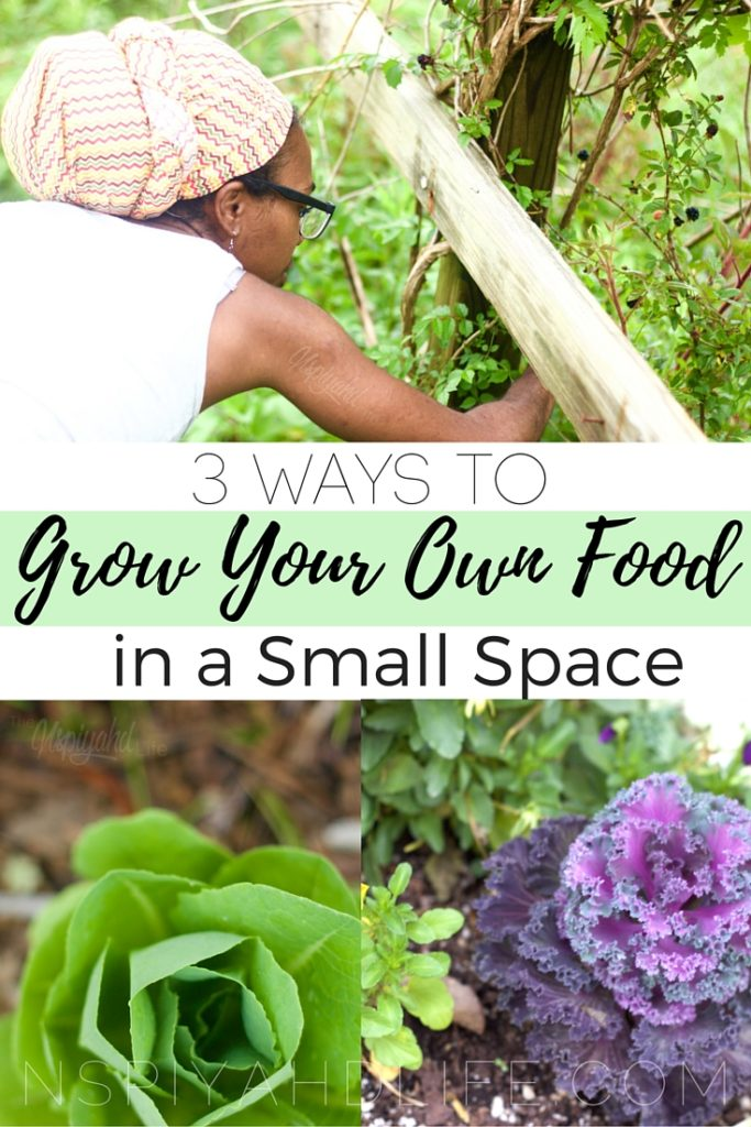 3 ways to grow your own food in a small space