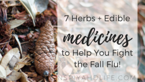 7-herbs-edibleto-help-you-fight-the-fall-flu1